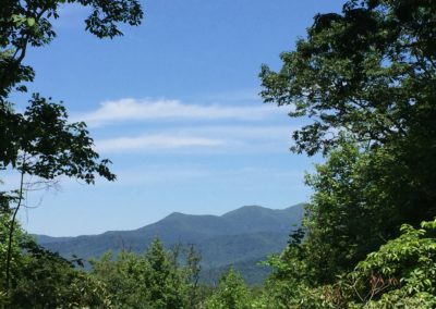 Protecting Mtn views for Asheville