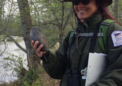 working with Wake Co govt to protect rare species