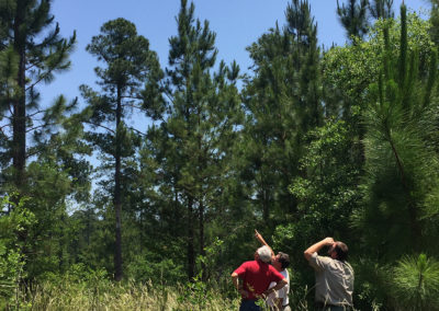 Photo of SERLC working with wildlife agency